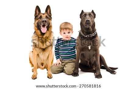 Cute boy and two dogs of breed German shepherd and Staffordshire terrier sitting together isolated on white background - stock photo