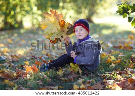 Cute boy sitting in the park with a bouquet of autumn leaves in their hands.