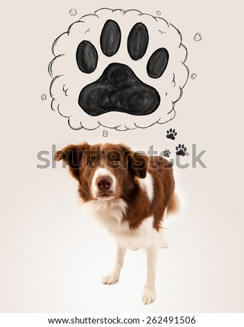 Cute brown and white border collie thinking about a paw in a thought bubble above his head - stock photo