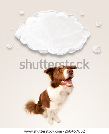 Cute brown and white border collie with empty cloud above his head - stock photo