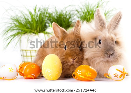 cute bunnies with easter eggs - stock photo