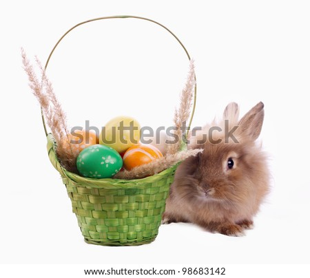 Cute bunny and green basket with Easter eggs isolated on white - stock photo