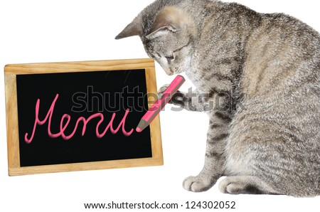 Cute cat holding a pink pencil writing on a menu board - stock photo