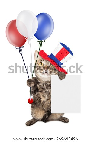 Cute cat wearing Fourth of July hat and holding balloons and a blank white sign to enter your message on - stock photo
