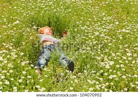 Cute child boy at chamomile field - stock photo