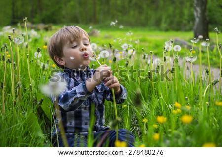 Cute child playing in a field with dandelions - stock photo