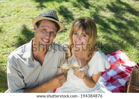 Cute couple drinking white wine on a picnic smiling at camera on a sunny day