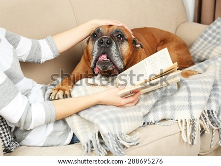Cute dog and girl lying on sofa, on home interior background - stock photo
