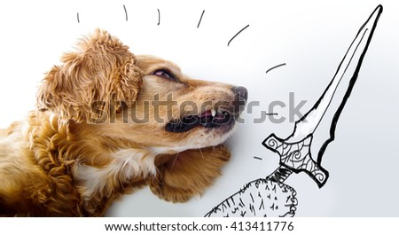 Cute English Cocker Spaniel puppy looking aggressive in front of a white background with sword sketch for battle. - stock photo