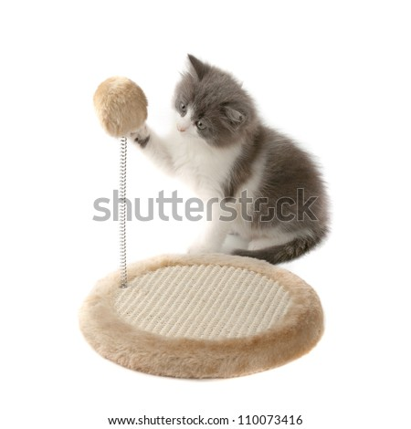 furniture covers for cat scratching