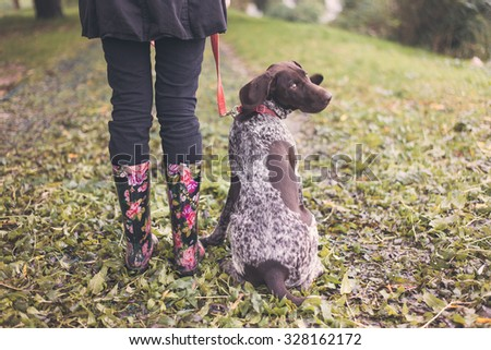 Cute german pointer and woman legs in rainboots, ready for walk in autumn park - stock photo