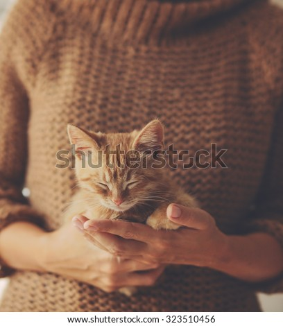 Cute ginger kitten sleeps on his owner's hands in warm sweater - stock photo