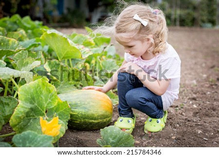 cute girl sitting at the pumpkin in the garden - stock photo