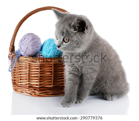 Cute gray kitten and wicker basket with skeins of thread isolated on white - stock photo