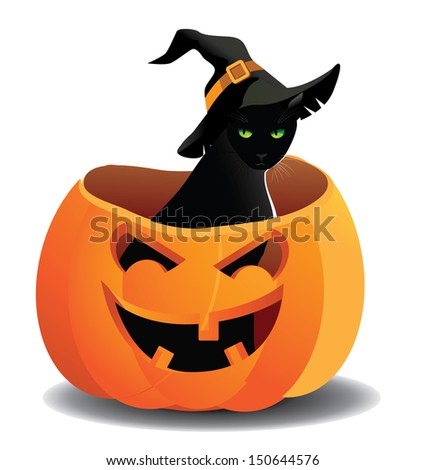 Cute Halloween cat in a jack o lantern. jpg - stock photo