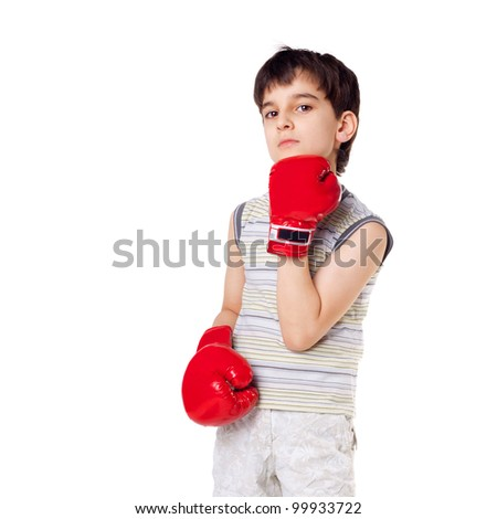 cute handsome little boxer closeup isolated on white