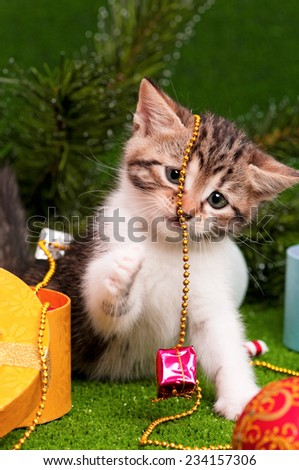 Cute kitten playing Christmas decoration on artificial green grass - stock photo