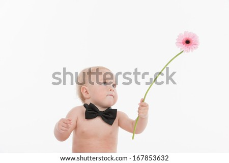 Cute little baby gentleman giving a beautiful flower. Standing in bow tie isolated over white background  - stock photo