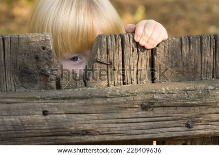 Cute little blond girl peering through a gap in a broken board in a rustic wooden fence with one eye - stock photo