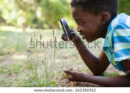 Cute little boy looking through magnifying glass on a sunny day - stock photo