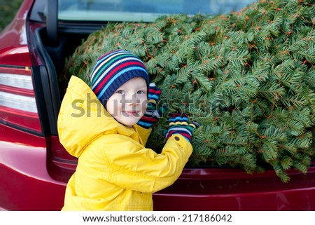 cute little boy shopping for christmas tree at winter - stock photo