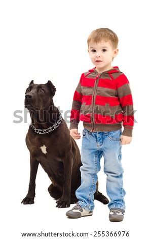 Cute little boy standing next to a dog breed Staffordshire Terrier - stock photo