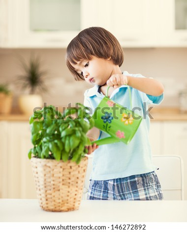Cute little boy watering a plant in his house. - stock photo