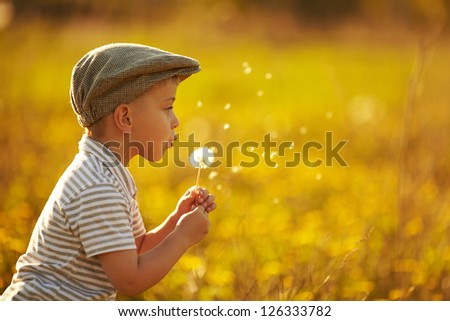 cute little boy with dandelions - stock photo