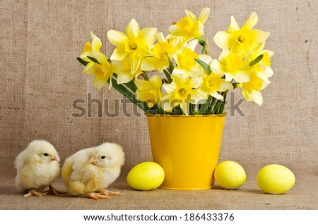 Cute little chicks and easter eggs - stock photo