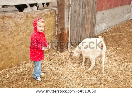 Cute little European toddler girl playing with animals in petting zoo. - stock photo