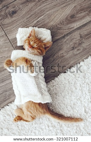 Cute little ginger kitten wearing warm knitted sweater is sleeping on the floor - stock photo