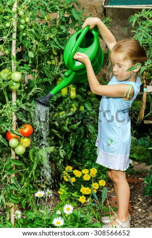 Cute little girl helping her mother - watering tomato and flowers in the backyard. - stock photo