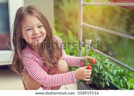 cute little girl holding growing tomatoes in pot - stock photo