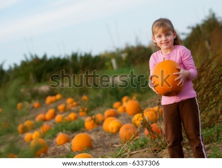 Cute little girl holding the pumpkin she's selected from the pumpkin patch.
