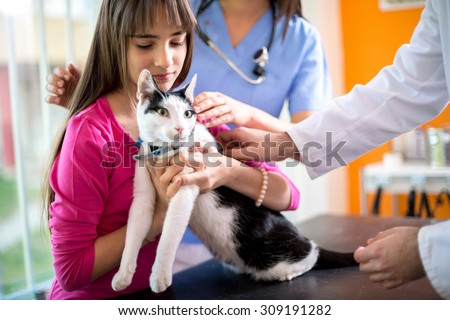 Cute little girl hugs and comfort her cat in  veterinary ambulant - stock photo