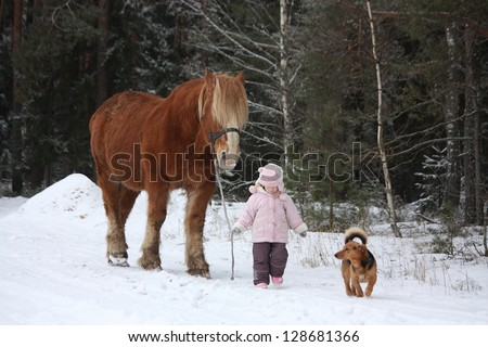 Cute little girl leading big draught horse and small dog by the forest in winter - stock photo