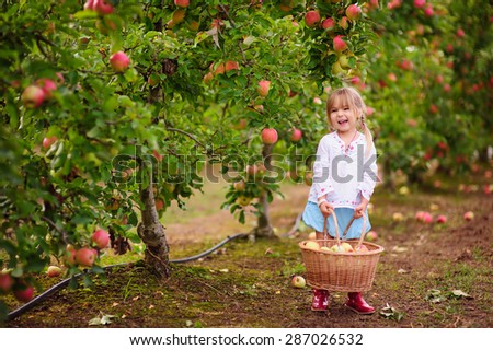 Cute little girl picking apples in a green grass background at sunny day - stock photo