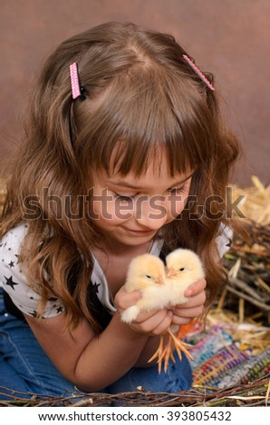 cute little girl playing with alive chickens in nest of twigs in farmers interior - stock photo