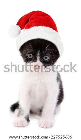Cute little kitten in Santa Claus hat, isolated on white