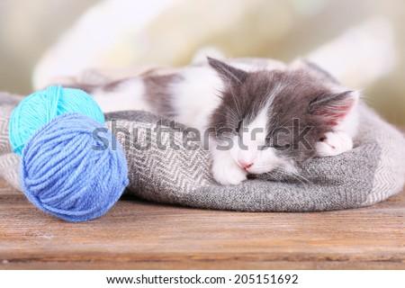 Cute little kitten sleeping on plaid, on bright background - stock photo