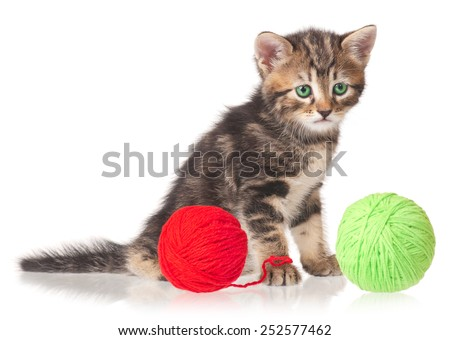 Cute little kitten with balls of color threads on white background cutout - stock photo