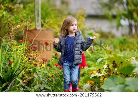 Cute little preschooler girl having fun in a garden on a beautiful autumn day - stock photo