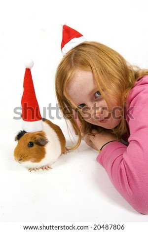 cute little red hair girl together with her guinea pig wearing a christmas hat on white - stock photo