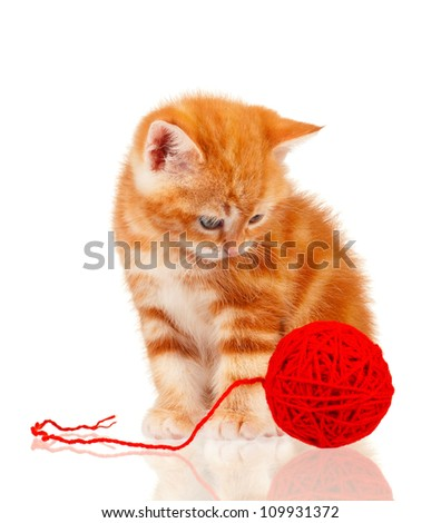 Cute little red kitten isolated with red clew on white background - stock photo