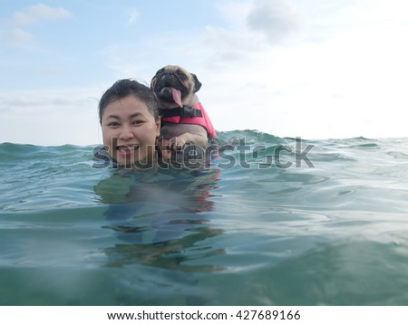 Cute pug dog puppy fear and afraid water ride on owner people woman back in summer beach, Koh Kood island, Trat province, Thailand. - stock photo