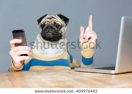 Cute pug dog with man hands in striped sweater using mobile phone and pointing up over grey background - stock photo