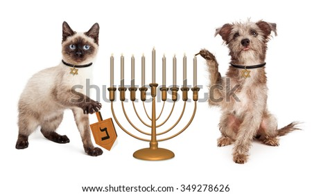 Cute puppy dog lighting a menorah candelabrum and a kitten spinning a wooden dreidel in celebration of the Jewish Hanukkah holiday - stock photo