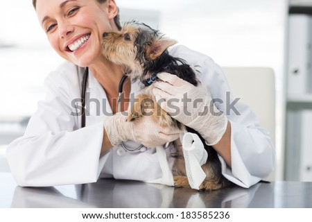 Cute puppy kissing female vet in clinic - stock photo