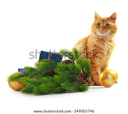 Cute red cat with Christmas tree and decorations on white background