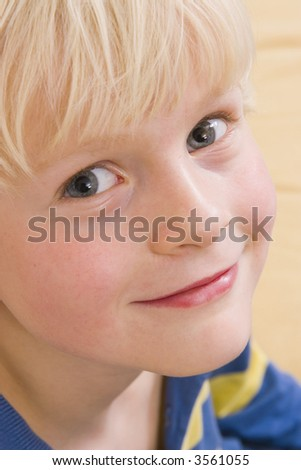 cute smiling little boy portrait